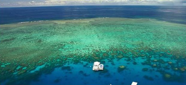 Great Adventures Great Barrier Reef Cruise to Norman Reef with Hot Air Balloon Cairns and Port Douglas