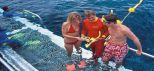 Quicksilver Outer Great Barrier Reef Tour Pontoon Snorkelling